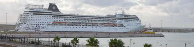 How to get from Rome Cruise Terminal Civitavecchia to Airport Fiumicino?