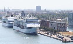 ميناء كروز كوبنهاغن خدمة النقل بمرسيدس الفئة E، خدمة النقل بمرسيدسالفئة S، فيتو، فيانو
